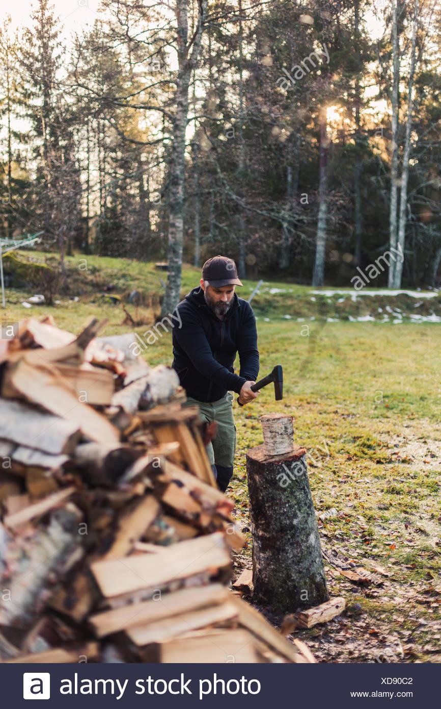 Un homme partager fire wood Photo Stock