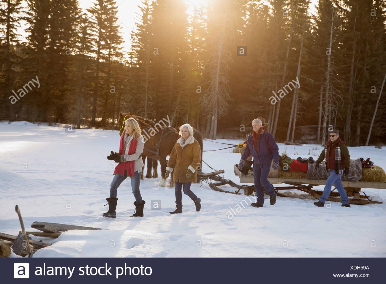 Amis marchant en traîneau tiré par des chevaux dans la neige Photo Stock