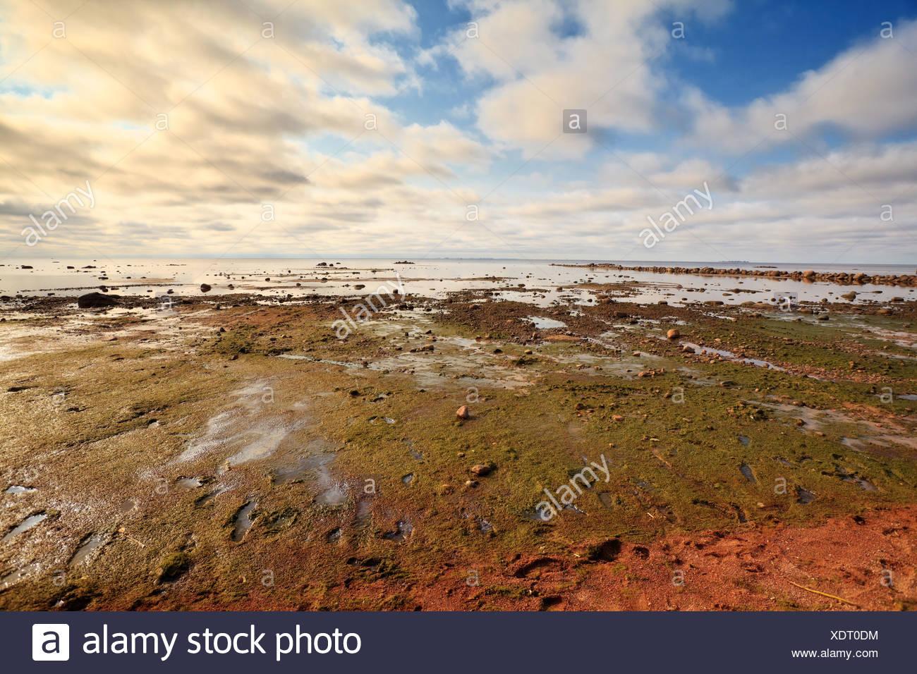 le réchauffement climatique Photo Stock