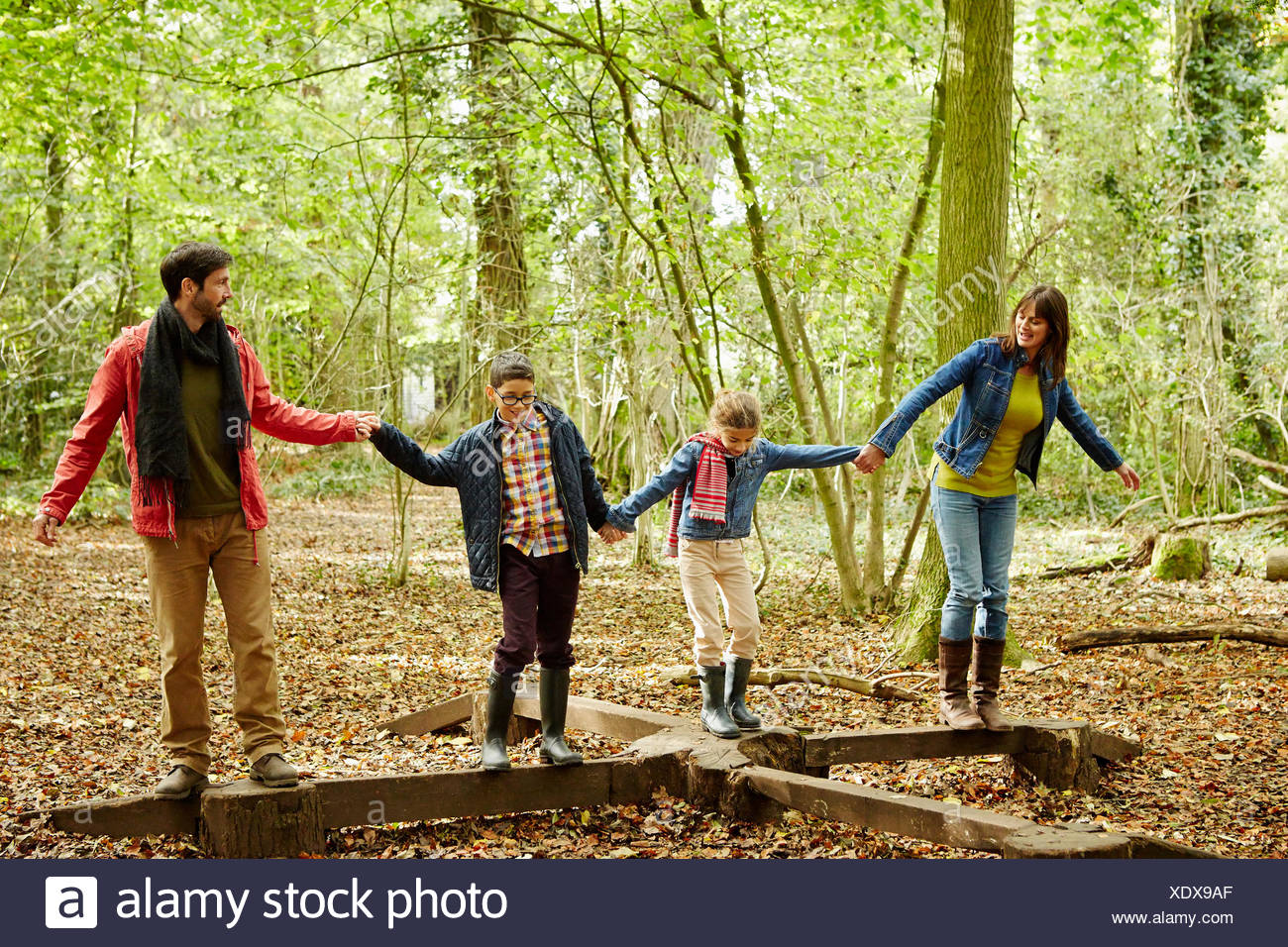 Bois de hêtre à l'automne. Une famille de quatre personnes, deux adultes et deux enfants. Photo Stock