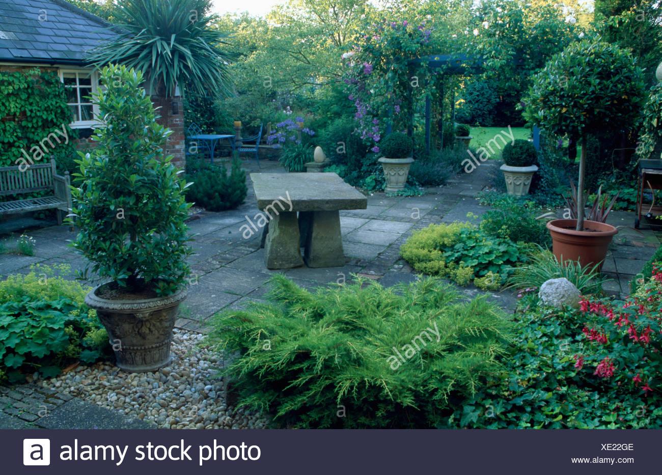 Arbre En Pot Terrasse les arbres taillés en pots sur terrasse devant maison. vue