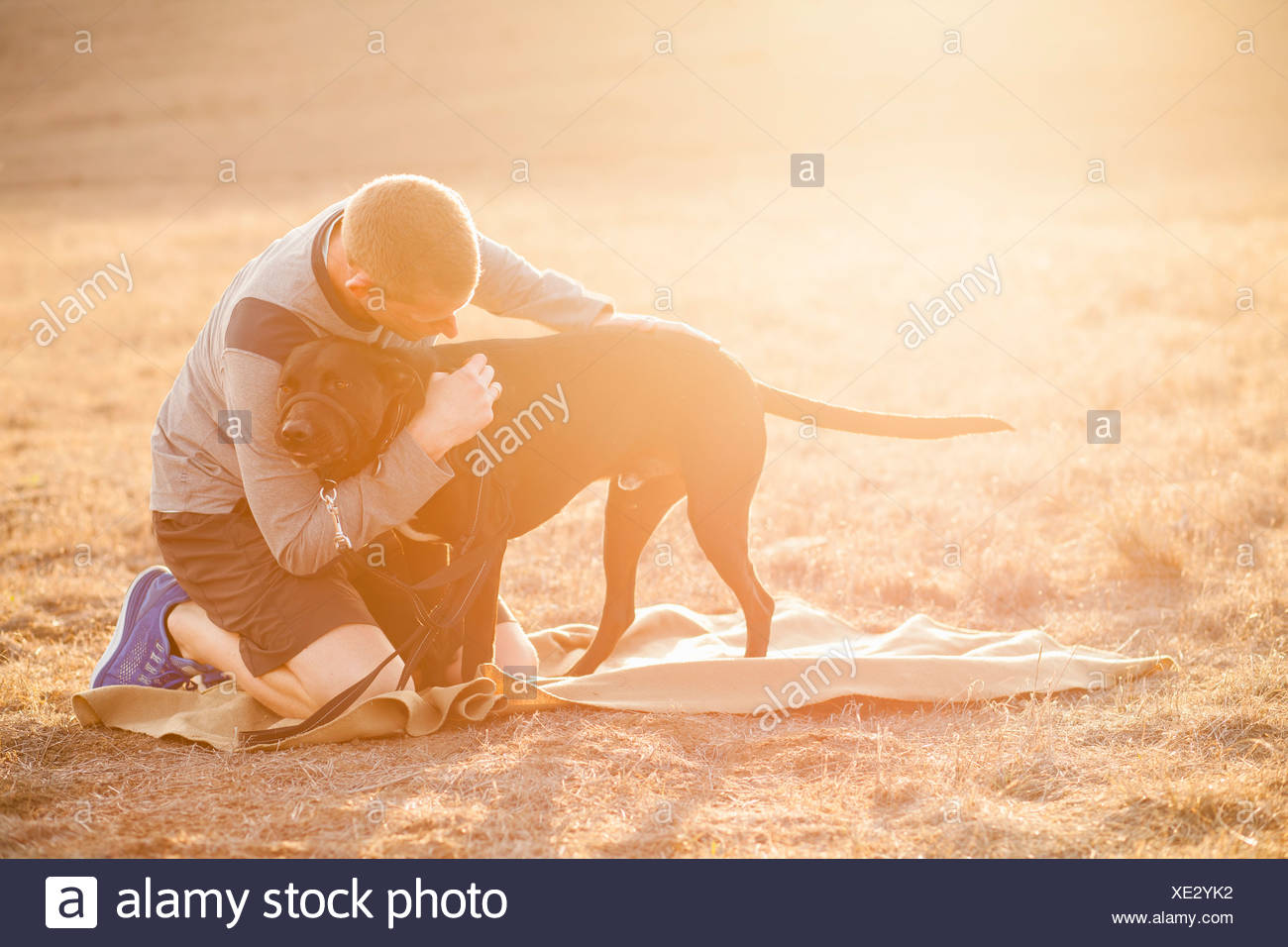 Homme hugging chien Photo Stock