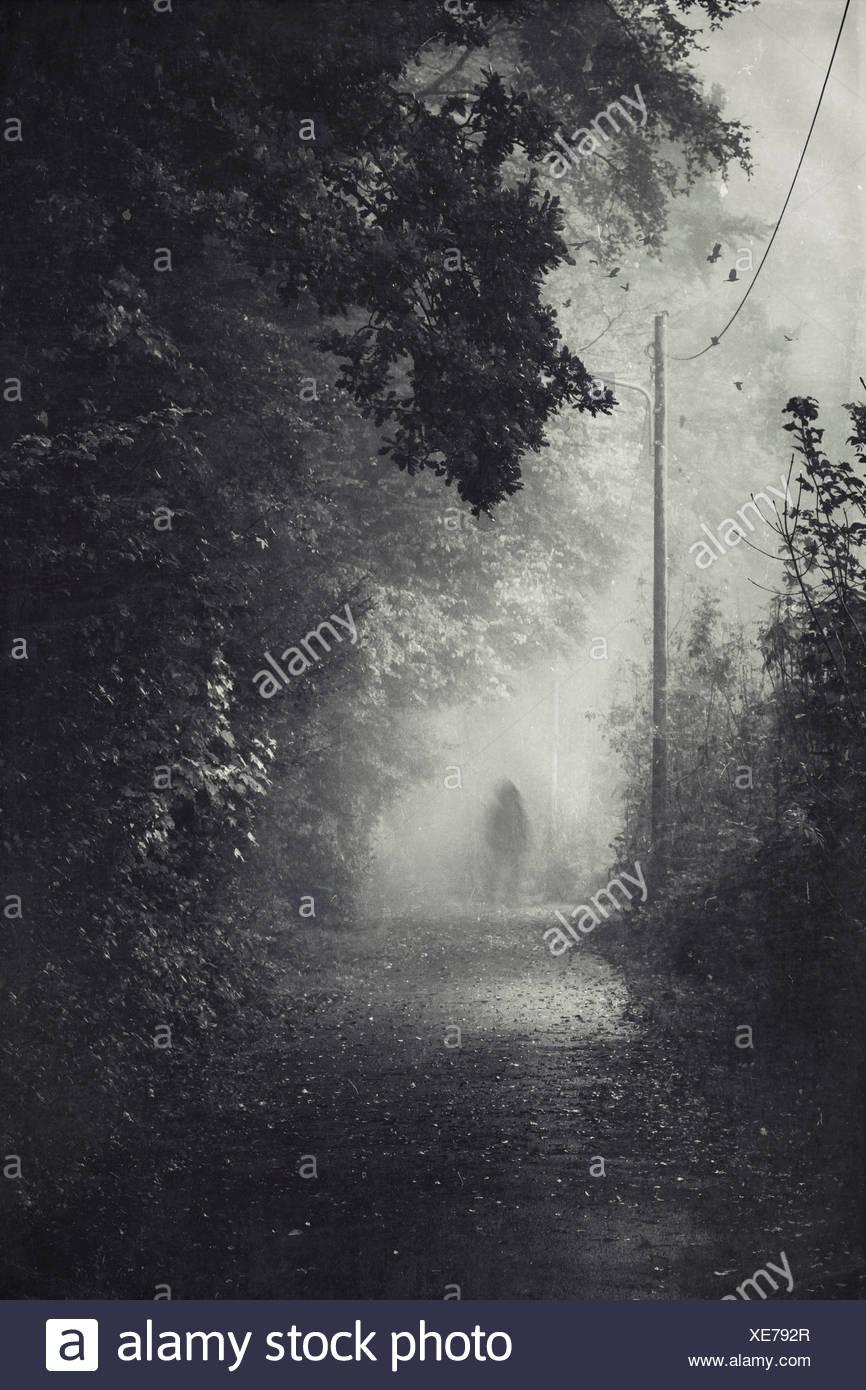 Silhouette d'un homme sur le chemin en cas de brouillard Photo Stock