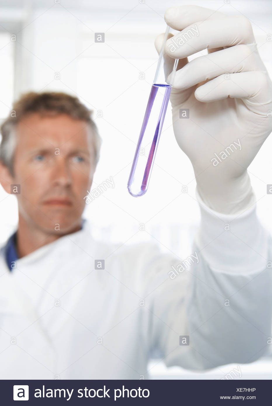 Homme lab worker holding petri à la lumière Photo Stock