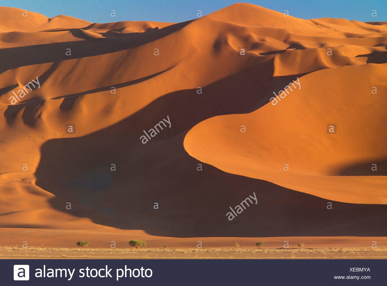Dunes de sable, Namib-Naukluft National Park, Namibie Photo Stock