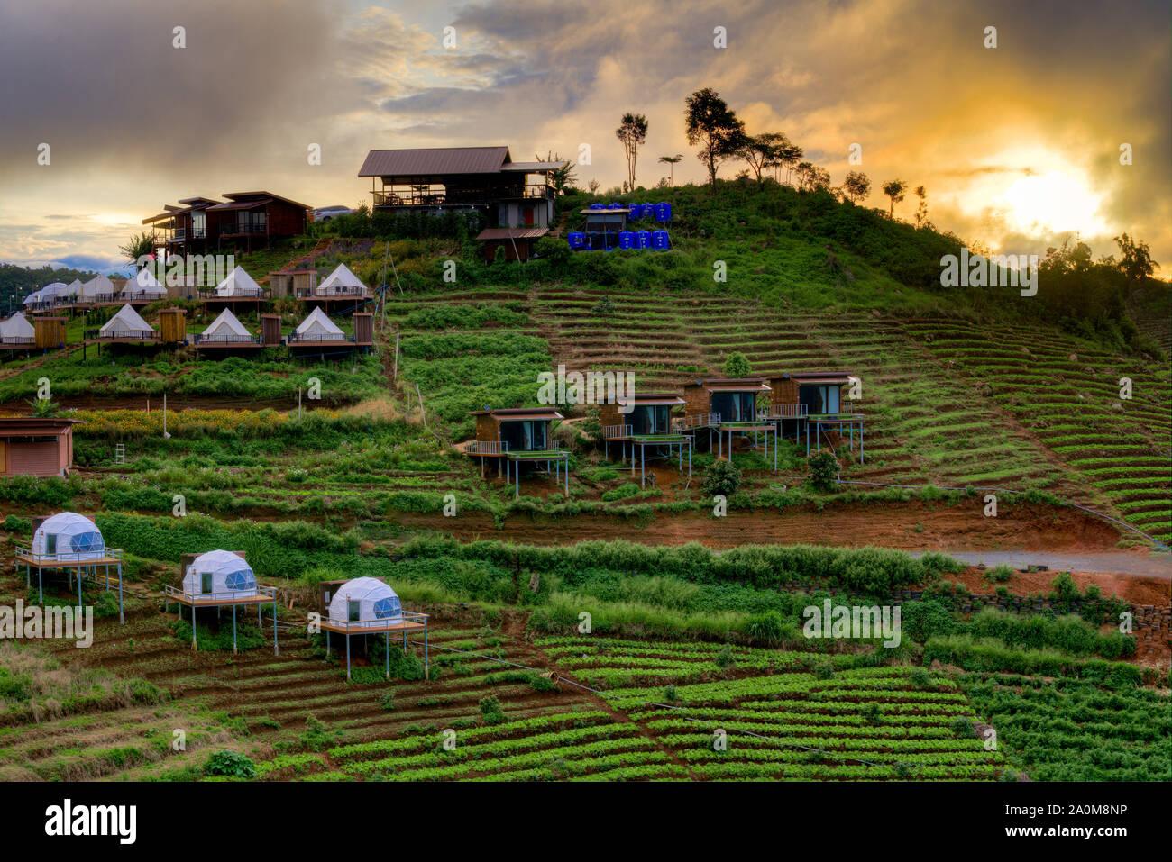 Molti tipi di popolare questo tipo di sistemazione disponibile in Mong marmellata, Chiang Mai, posizionata tra le terrazze di montagna a sunrise. Foto Stock