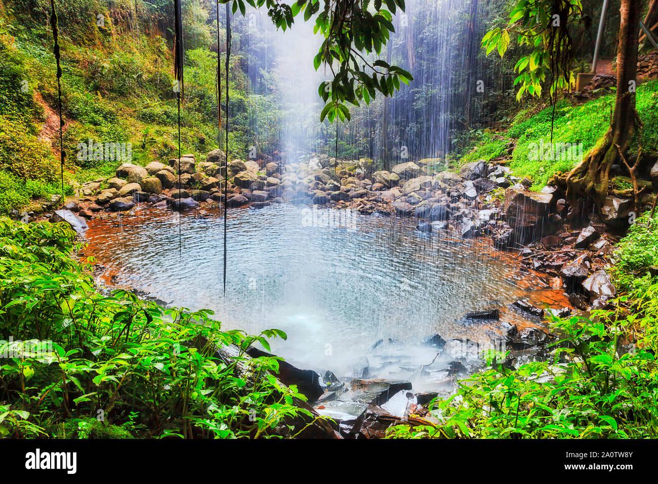 All'interno della cascata - Crystal rientrano in Dorrigo parco nazionale dell'Australia - antica foresta pluviale, parte del continente Gondwana. Flusso di acqua che ricade verso il basso per r Foto Stock