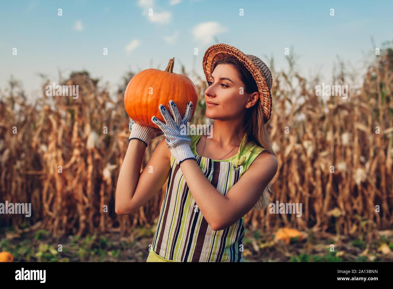 Raccolto di zucca. Donna giovane agricoltore picking raccolto autunnale di zucche in azienda. L'agricoltura. Il ringraziamento e la preparazione di Halloween Foto Stock