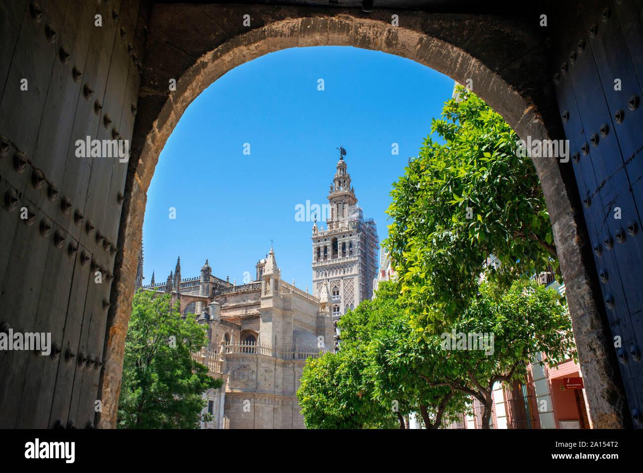 La Giralda di Siviglia, vista del XII secolo torre moresca conosciuta come La Giralda nel centro del vecchio quartiere della città di Siviglia, in Andalusia, Spagna Foto Stock