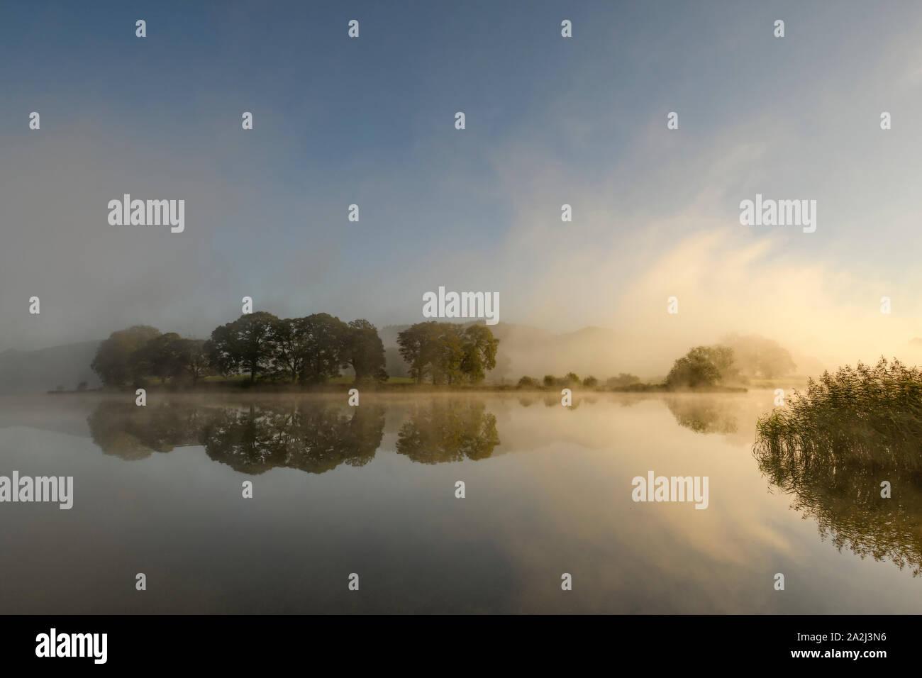 Alberi riflessa in acqua Esthwaite vicino Hawkshead come la luce del sole si rompe attraverso la mattina nebbia autunnale Foto Stock