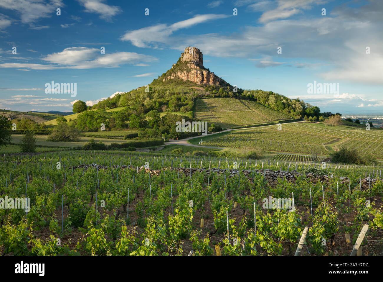 La Roche de Solutré, Solutré-Pouilly, Bourgogne, Francia Foto Stock