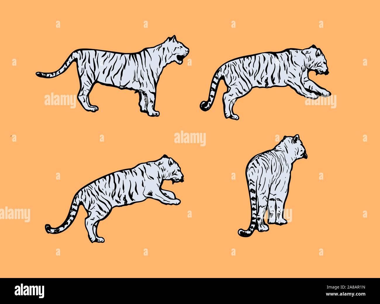 Cartoon Lion Animal Outline Vector Immagini Cartoon Lion Animal