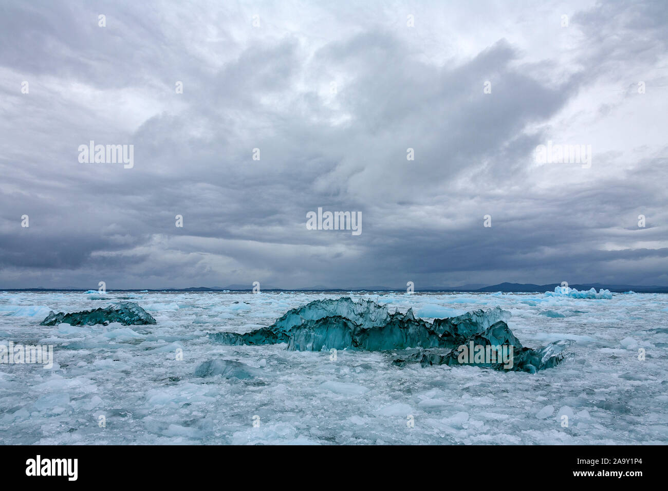 Verde ghiaccio anamorfici da San Rafael Glacier galleggianti in Laguna San Rafael in Laguna San Rafael Parco Nazionale, Patagonia nel sud del Cile, Sud Am Foto Stock