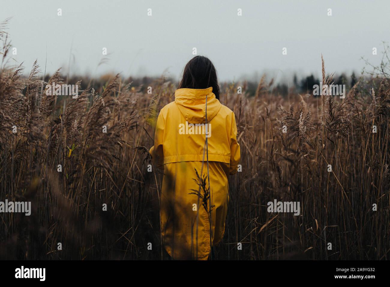Femmina in erba alta giallo che indossa la pioggia e il cappotto di guardare lontano dalla telecamera - Moody scenario autunnale con una giovane ragazza in abbigliamento luminoso camminare in alta g Foto Stock