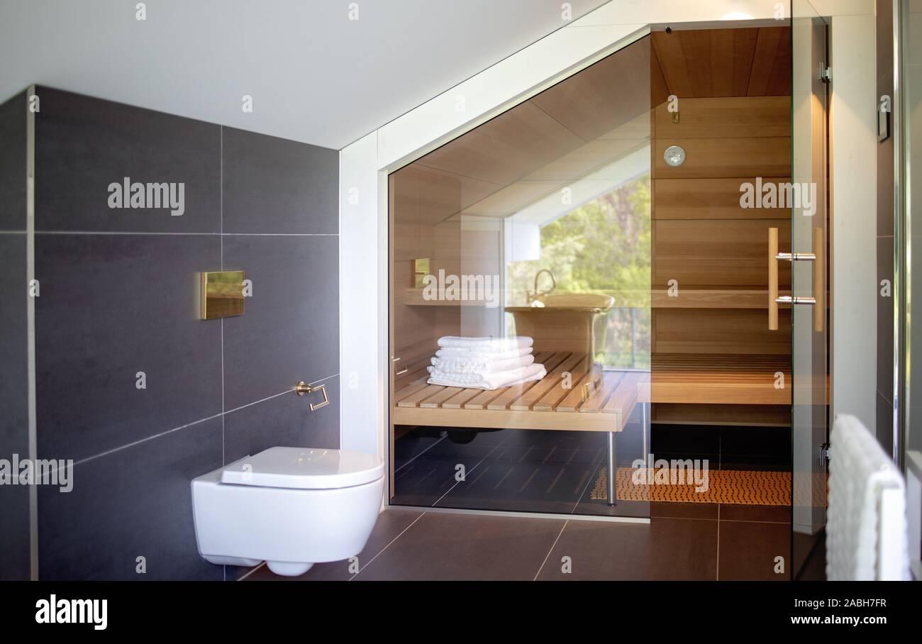 Bagni Di Lusso Moderni bagno moderno e di una sauna. interni contemporanei di casa