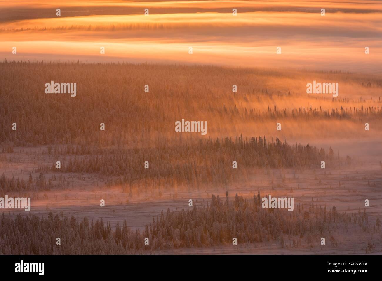 Landschaft im Gegenlicht, Schwedisch-Lappland, Skandinavien Foto Stock