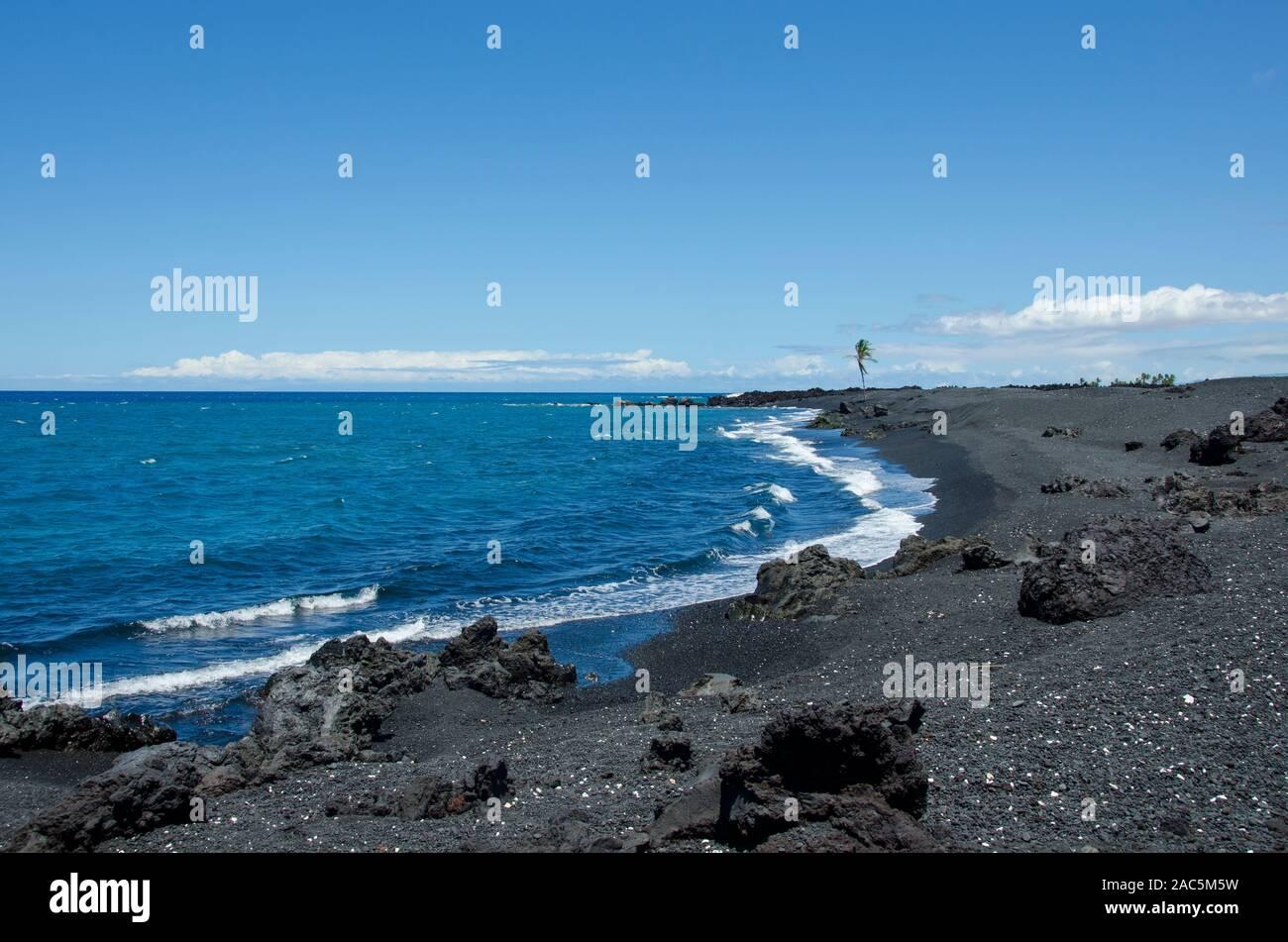 Un lone Palm tree sembra posizionarsi su Keawaiki Bay e il suo gran parte spiaggia di sabbia nera, Hawai'i'isola; un 1859 Mauna Loa eruzione poste in stato di overflow in th Foto Stock