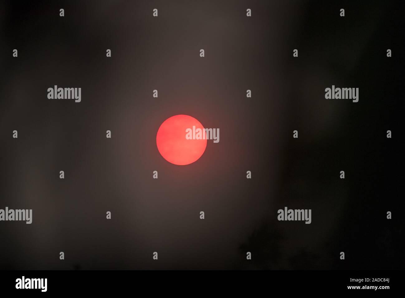 Sydney, Nuovo Sud, Australia. 4° dic, 2019. Australia - Forte vibrante tramonto visto attraverso Sydney il 4 dicembre 2019 come Sydney ancora una volta è coperto da una spessa coltre di fumo dal Nuovo Galles del Sud bushfires. Credito: mjmediabox/Alamy Live News Foto Stock