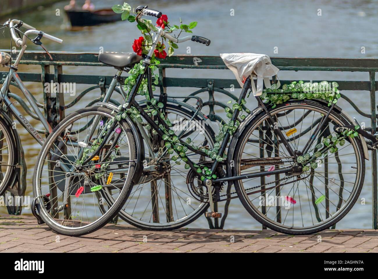 Singola vecchia bicicletta con rose parcheggiate su un ponte nella città interna di Amsterdam, Paesi Bassi Foto Stock