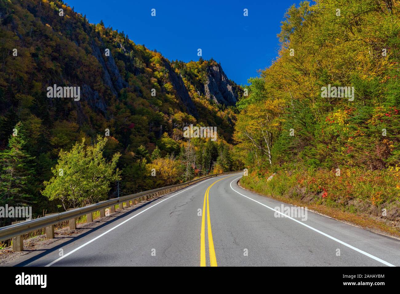 Una curva la strada conduce attraverso un passo di montagna circondato da foresta colorata visualizzazione di vivaci colori di montagna. Foto Stock