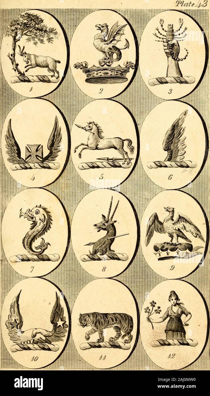 British creste : contenente le creste e motti delle famiglie di Gran Bretagna e Irlanda; insieme con quelli delle principali città; e un glossario di termini araldici . Sfxtc7ul Tiy (r. StZThoefir J.>!x/ ^ h-S Alfiiivcd. ShercTuIiy ff Sandera ^n^-^il tlt-Ri AirhvihHf fiateJlJl Foto Stock