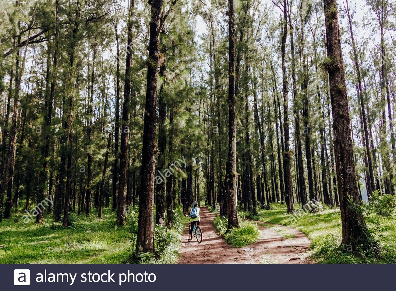 mujer en bicicleta en medio de un bosque frontoso con mochilla azul Foto Stock