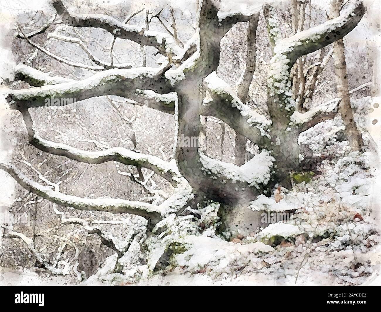 pittura acquerello di neve che copre alberi e rami torti invernali in una foresta collinare Foto Stock