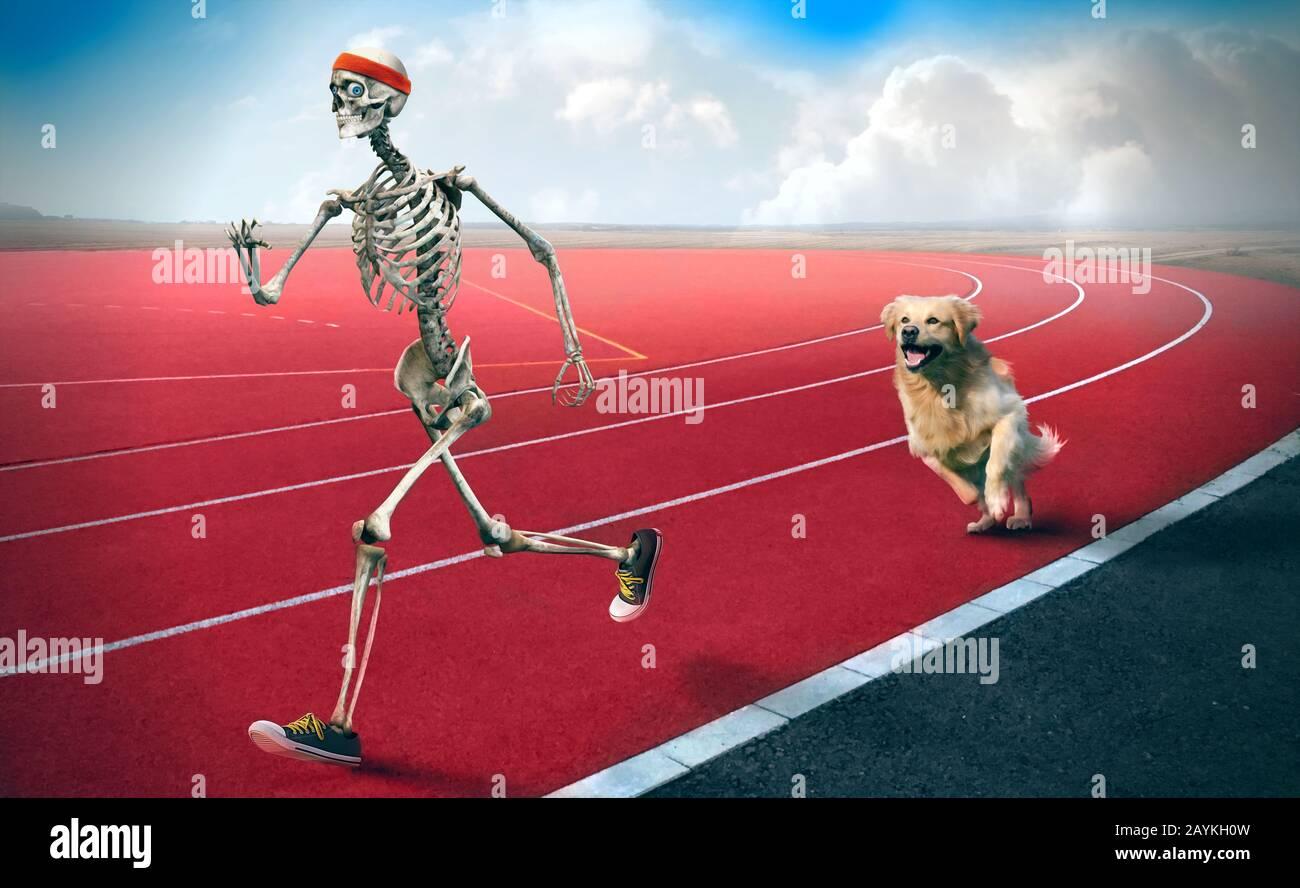Un'arte divertente di uno scheletro sportivo che corre in una pista da corsa mentre un cane dietro lo sta inseguendo. Foto Stock