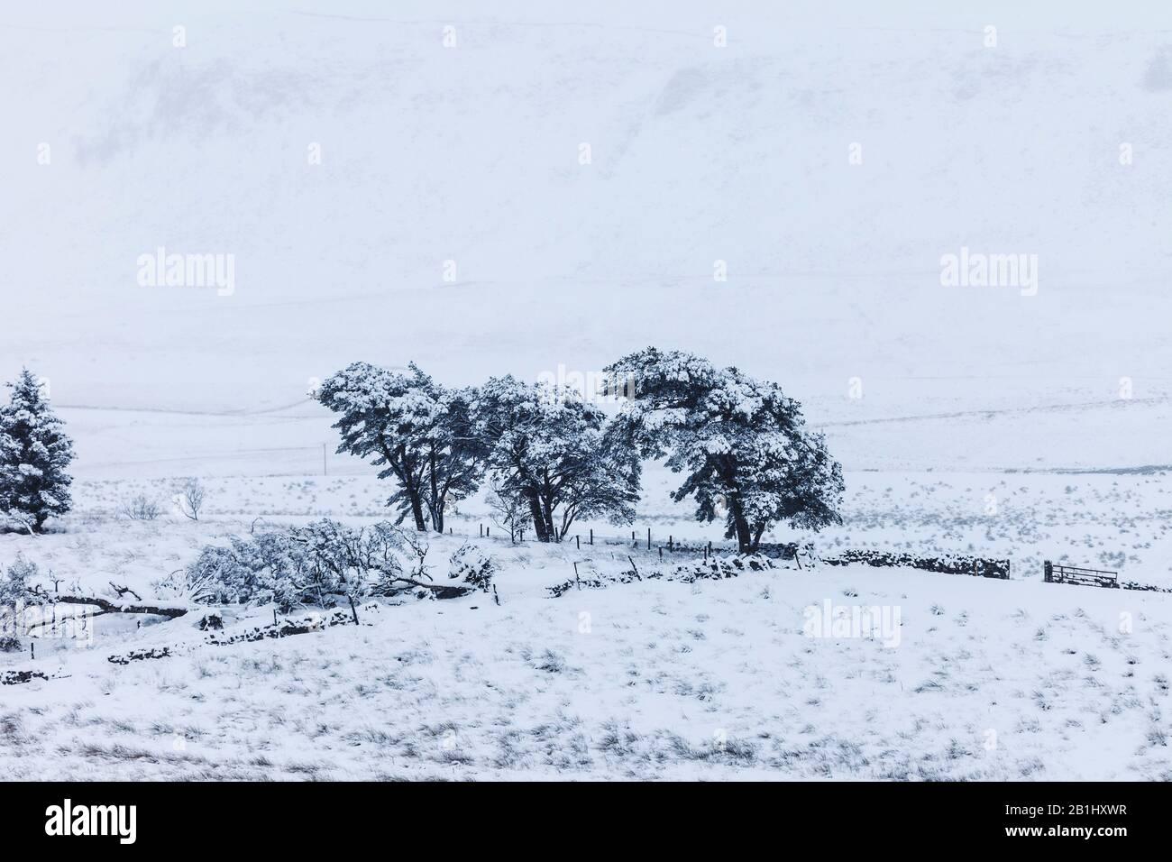 Winter Landscape, North Pennines, Upper Teesdale, County Durham, Regno Unito Foto Stock