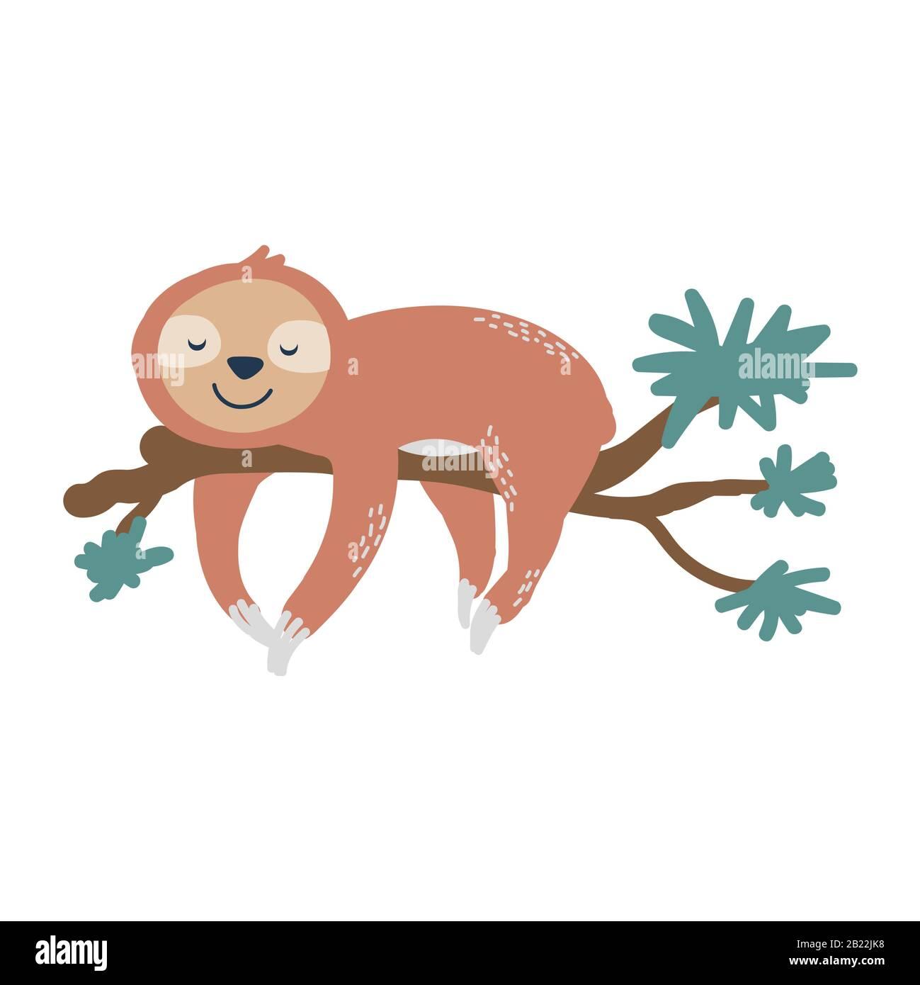 Cute sloth su albero ramo vettore illustrazione. Disegno di