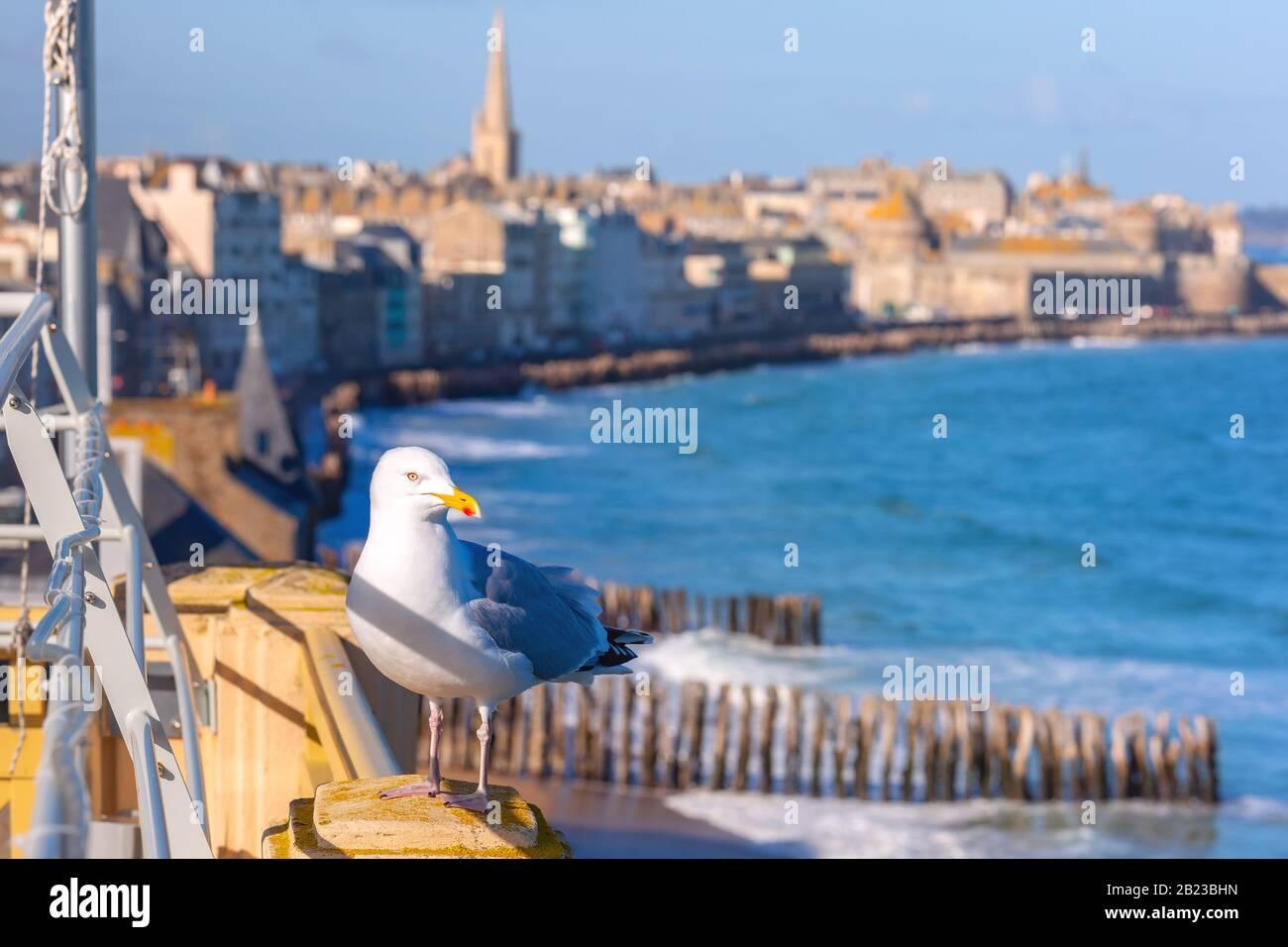 Saint Malo (aerial View) Immagini e Fotos Stock - Alamy
