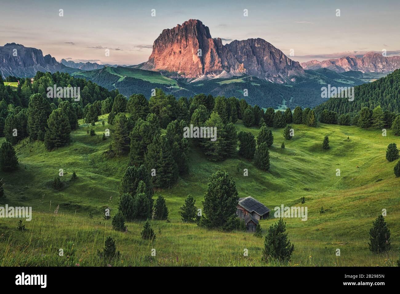 Belle montagne italiane Dolomiti paesaggio con prato e foresta in Alto Adige o Alto Adige all'alba. Italia, Europa Foto Stock