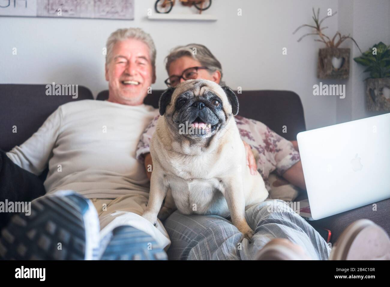 Divertente concetto di famiglia con coppia di persone caucasiche allegro uomo e donna anziani sedersi sul divano con computer portatile e vecchio cane pug carino sedersi su di loro guardando la fotocamera Foto Stock