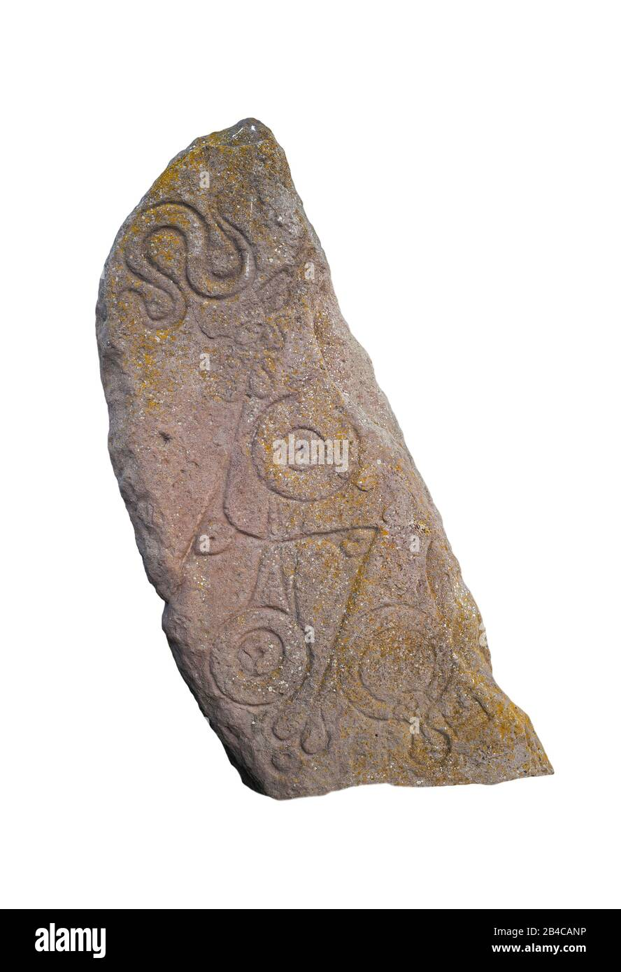 The Serpent Stone, scolpito Pitta pietra a Aberlemno, Scozia, Regno Unito su sfondo bianco Foto Stock