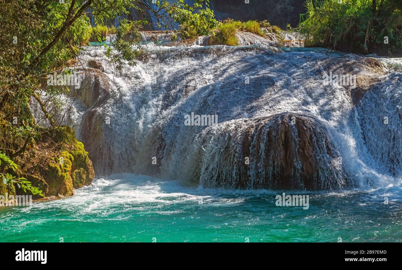 Primo piano di una cascata delle cascate di Agua Azul nella foresta pluviale di Chiapas, Palenque, Messico. Foto Stock