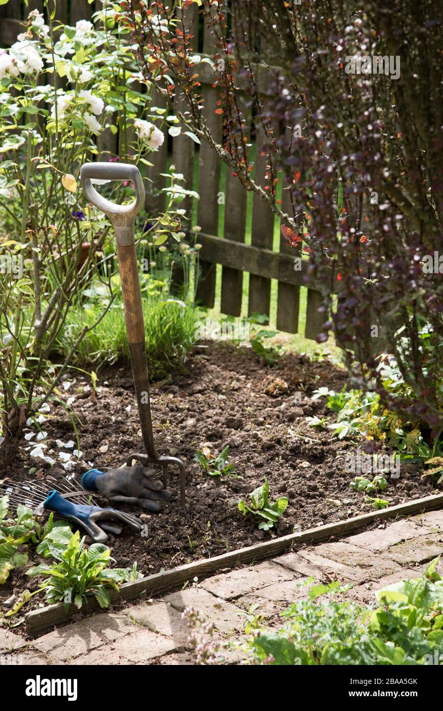 Forchetta da giardino e guanti lasciati in un bordo di fiori Foto Stock