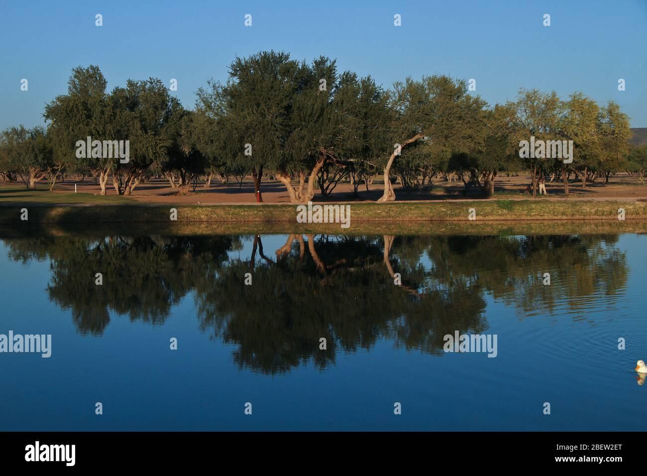 Club de Golf estilo desertico en el real de Catorce (Foto:LuisGutierrez/NortePhoto.com) Foto Stock