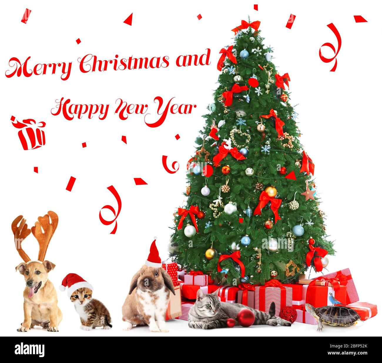 Immagini Divertenti Animali Natale.Divertenti Animali Di Natale Buon Natale E Felice Anno Delle Notizie Foto Stock Alamy