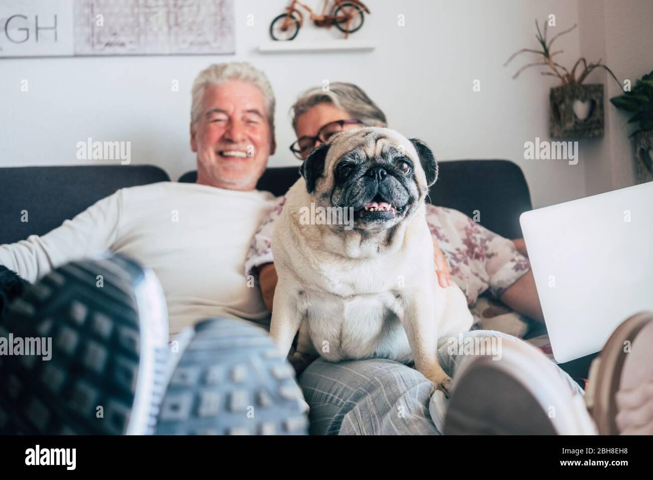 Coppia senior caucasica sedersi sul divano con divertente cane pug guardare. Felicità con amore per gli animali e miglior concetto amico - la vita quotidiana a casa con persone simpatiche e cucciolo vecchio Foto Stock