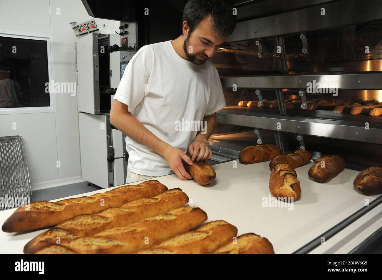 Produzione di pane biologico Foto Stock