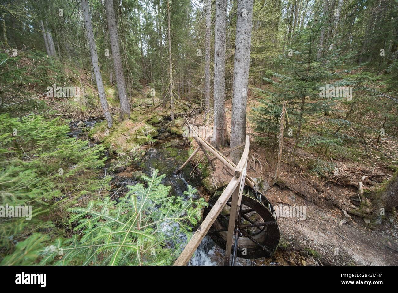 ruota ad acqua nella foresta in germania. Foto Stock