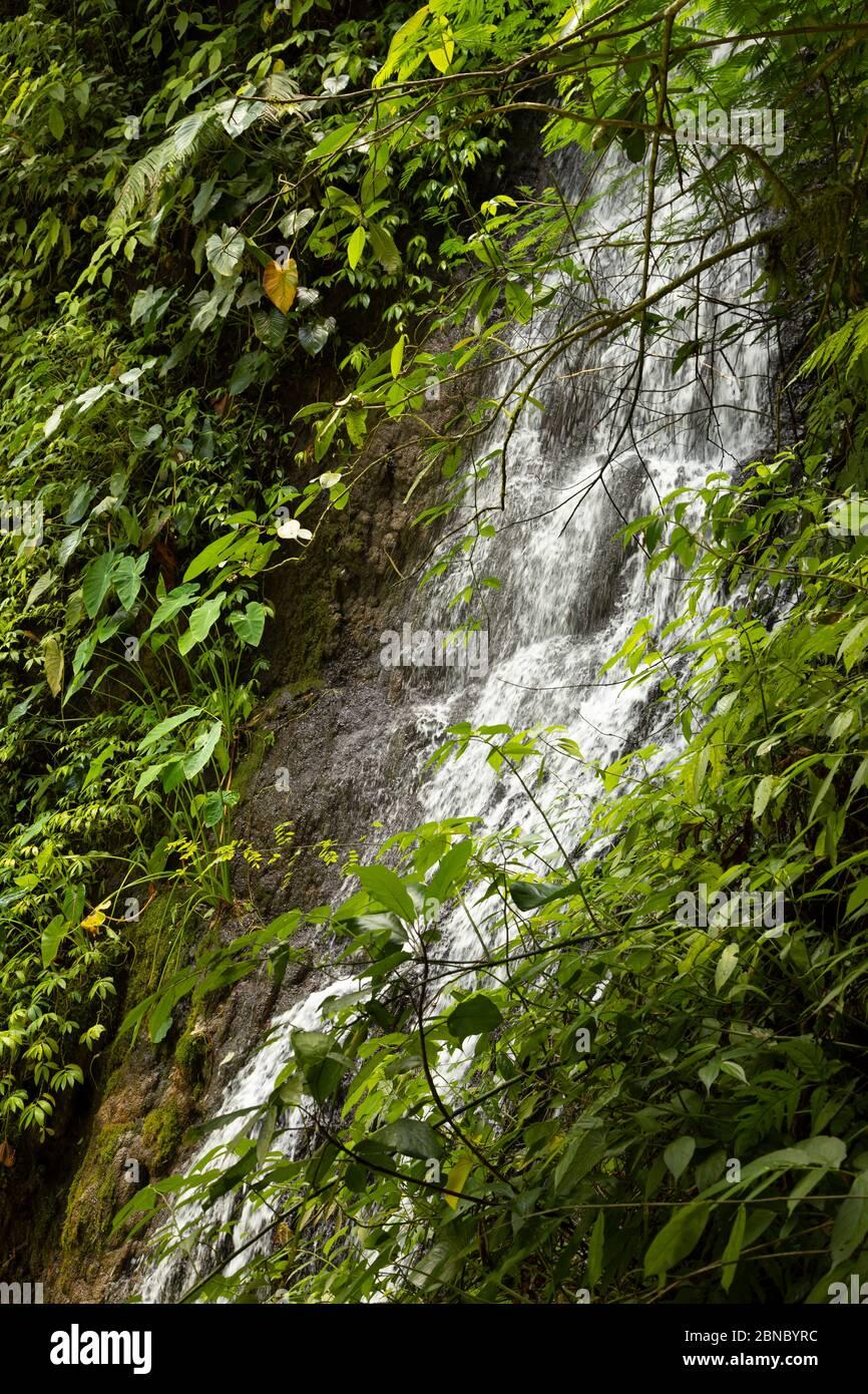Vista ravvicinata delle acque fresche, rumorose e intense della cascata Tumpak Sewu, a Giava Est, Indonesia. Foto Stock
