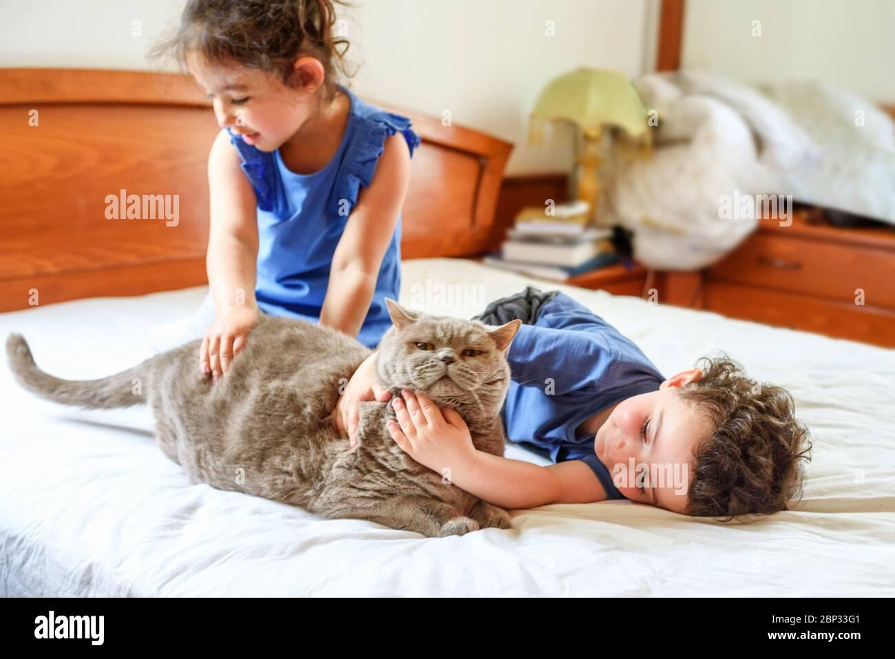 Felici i bambini con il loro animale domestico che si stendono sul letto. Ragazzo e ragazza che giocano con il gatto su un letto in casa. Foto Stock