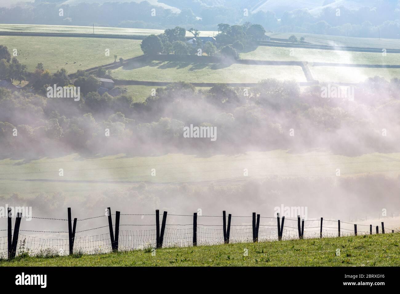 teign Valley, nebbia nella valle del teign Dartmoor ambiente, conservazione ambientale, questioni ambientali, Eternity, Foresta, come Away, Tree, UK Foto Stock
