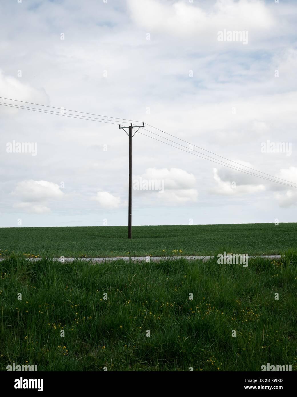 Un polo di linea di alimentazione singolo si erge alto sopra i campi verdi nel paesaggio meridionale della Svezia chiamato Skåne Foto Stock