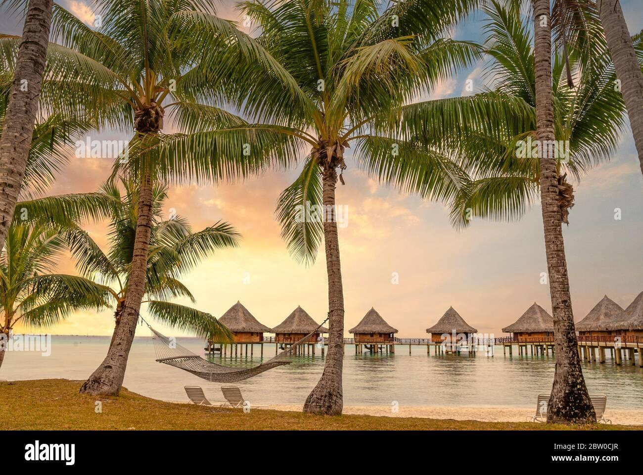 Resort sulla spiaggia in una laguna sull'Isola di Tuamotu al tramonto, Polinesia Francese Foto Stock