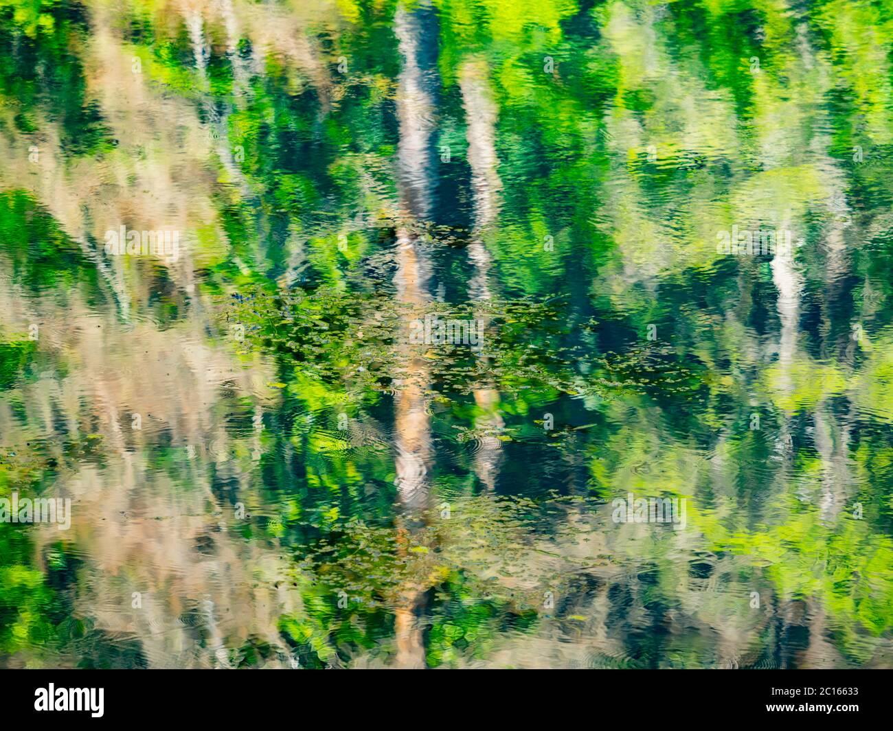 Lago con cascata e derelict vecchia segheria e mulino ad acqua Cogrljevo jezero Croazia Europa quasi artistica riflessioni d'acqua della foresta di Green Spring Foto Stock