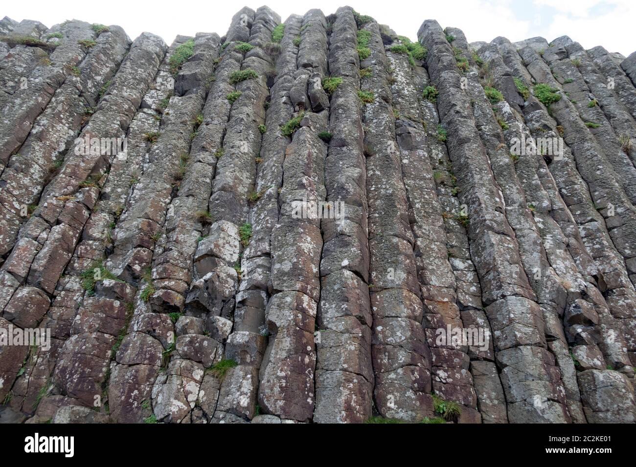 Colonne geometriche di basalto formazioni rocciose al Selciato del gigante, Irlanda del Nord, Europa Foto Stock
