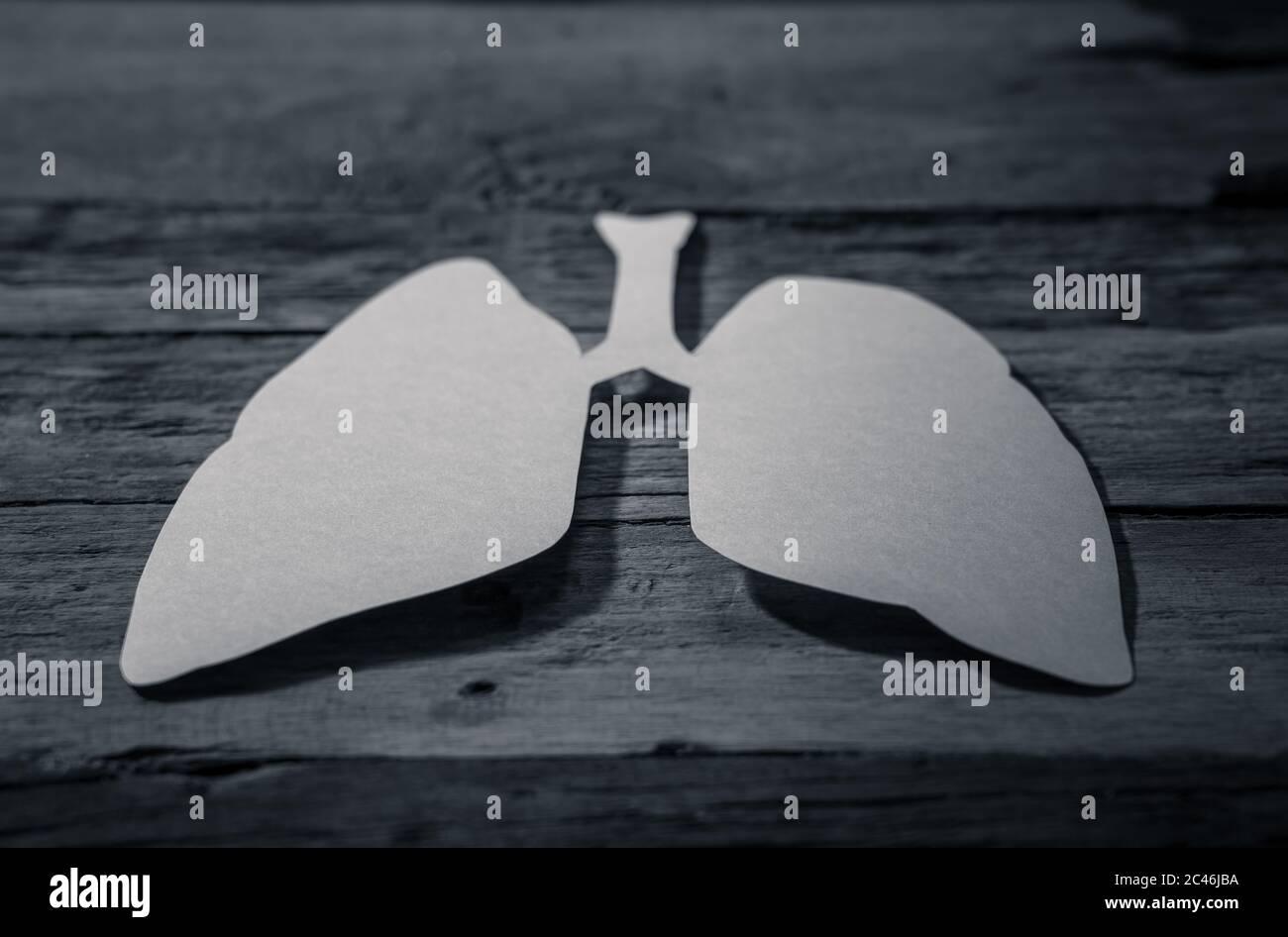Simbolo dei polmoni isolato su sfondo rustico. Giornata mondiale della tubercolosi. Assistenza sanitaria, medicina, cancro ai polmoni, organo donatore interno e campagna di smettere di fumare Foto Stock