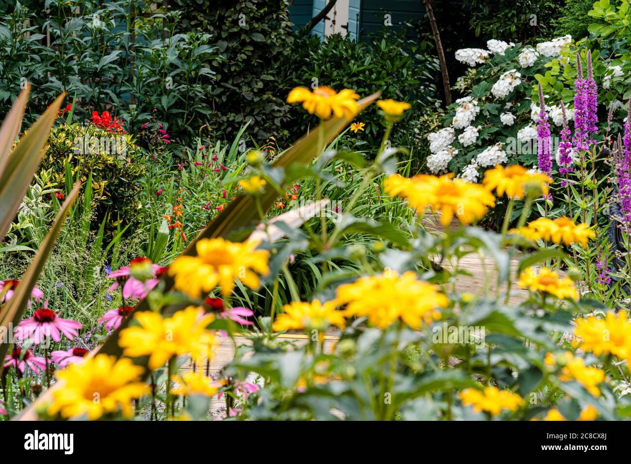 confine fiorito estivo occupato Foto Stock